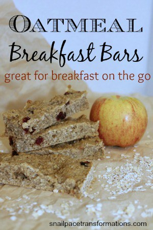 oatmeal breakfast bars (medium)