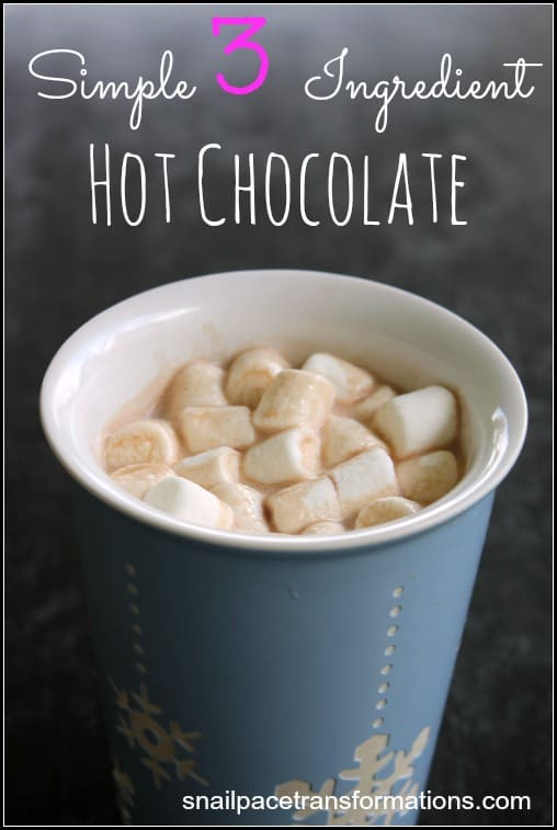 Simple 3 Ingredient hot chocolate