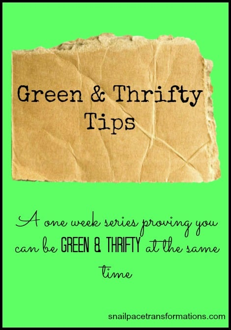 green and thrifty tips
