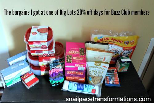 big lot bargains