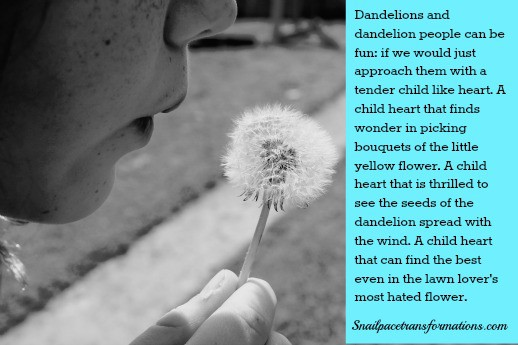 dandelion people qoute