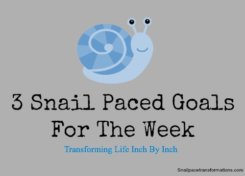 3 snail paced goals for the week