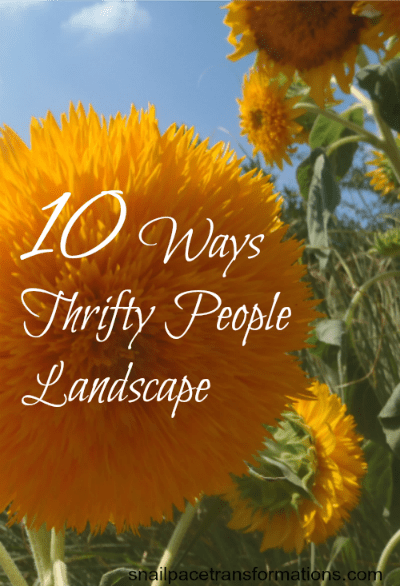 10 Ways Thrifty People Landscape (med)