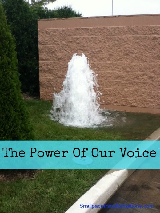 The Power Of Our Voice