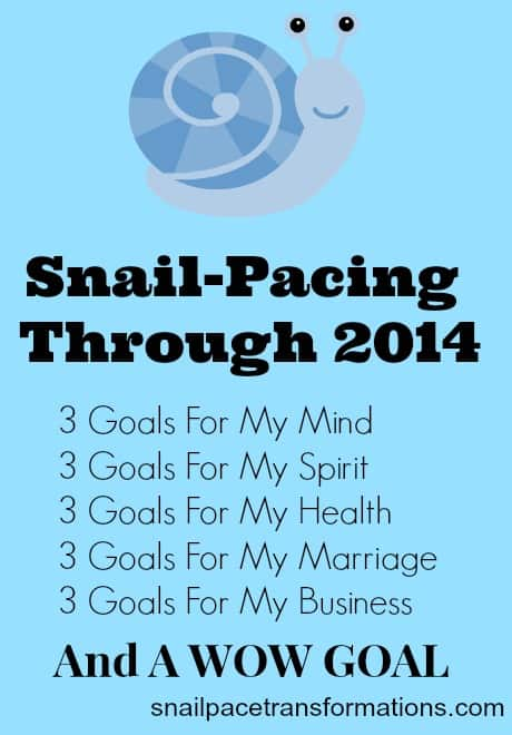 snail-pacing through 2014 (snail pace transformations)