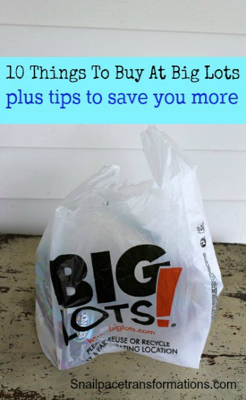 10 things to buy at big lots (small)