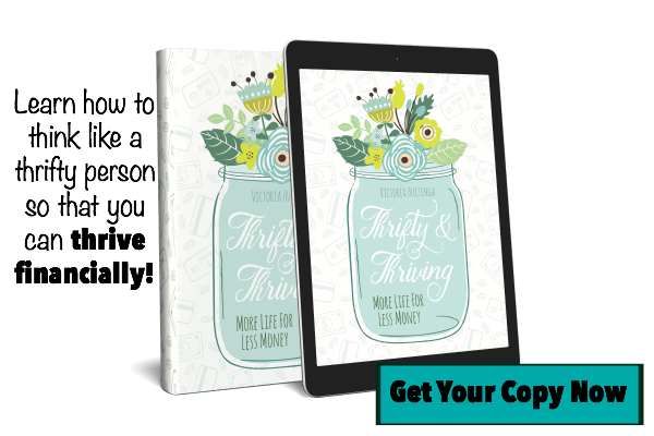 Thrifty and Thriving: More Life for Less Money by Victoria Huizinga of Snail Pace Transformations