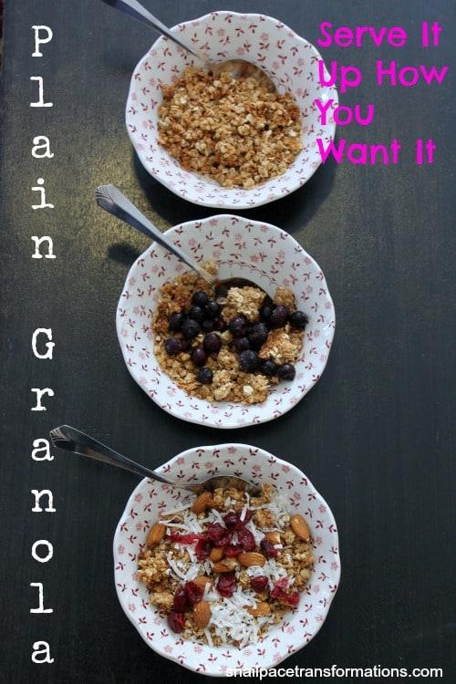 plain granola (2)