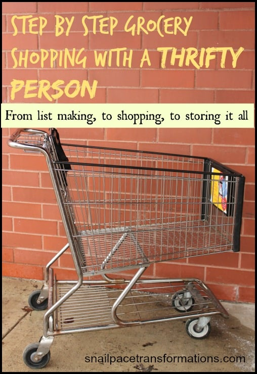 step by step grocery shopping with a thrifty person