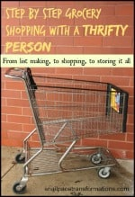 step by step grocery shopping with a thrifty person (button)