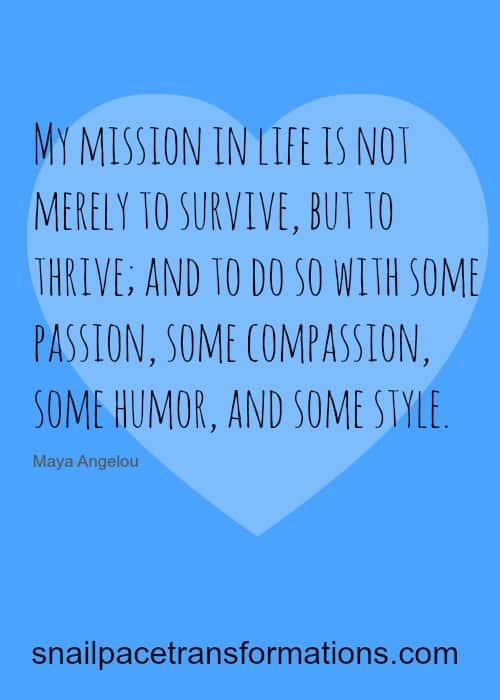 my mission passion