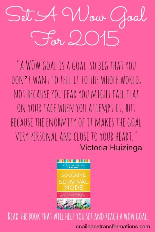 Set A WOW goal for 2015 And the book that will help you make and reach it.