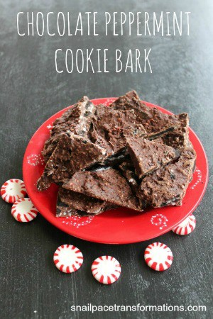 chocolate peppermint cookie bark (small)
