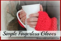 Simple Fingerless Gloves (small)