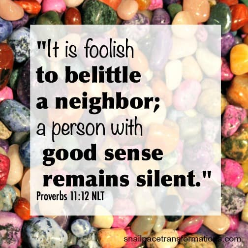 It is foolish to belittle a nieghbor; a person with good sense remains silent (Proverbs 11:12)