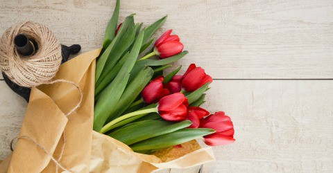 Gift Ideas For Teachers Who Love Plants