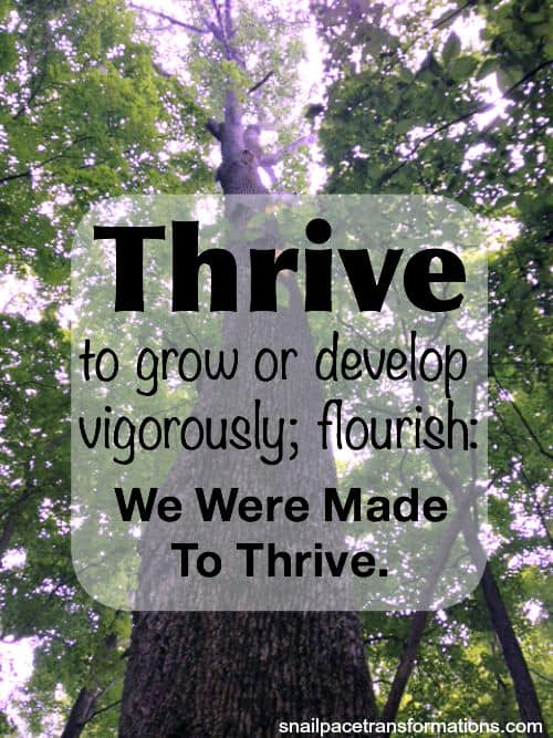 Are you thriving in life or are you just living a mediocre life