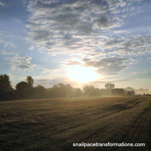 sunrise while running