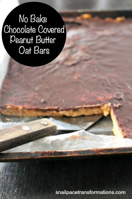 No Bake Chocolate Covered Peanut Butter Oat Bars. Satisfy your sweet tooth naturally.