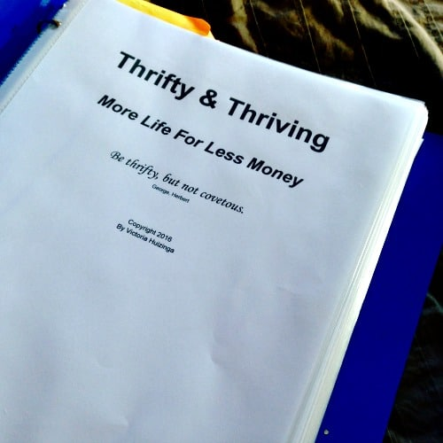 Thrifty & Thriving More Life For Less Money