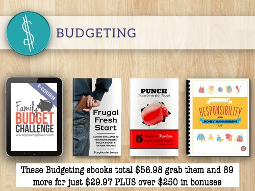 Budgeting (words)