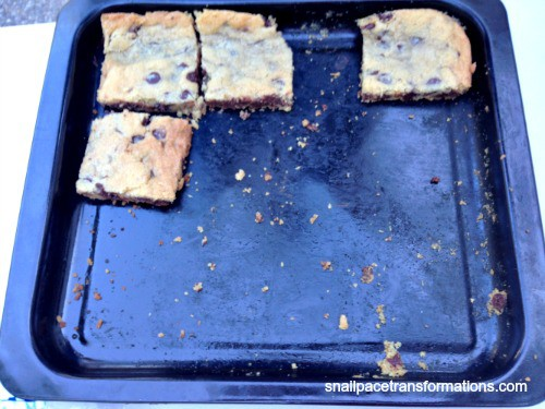 Chocolate chip cookie s'mores   Snail Pace Transformations recipe