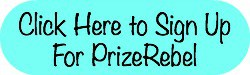Use my referral link to sign up for PrizeRebel | Snail Pace Transformations