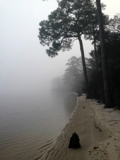 RV Trip: Week 5: Niceville, Fred Gannon Rocky Bayou State Park