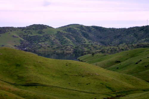 RV Trip: The green hills of California.