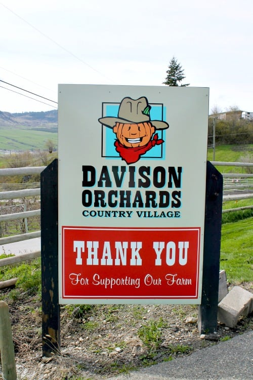 Week 15 of a 22 week RV road trip. Visit to Davison Orchards only to discover the season had not started yet.