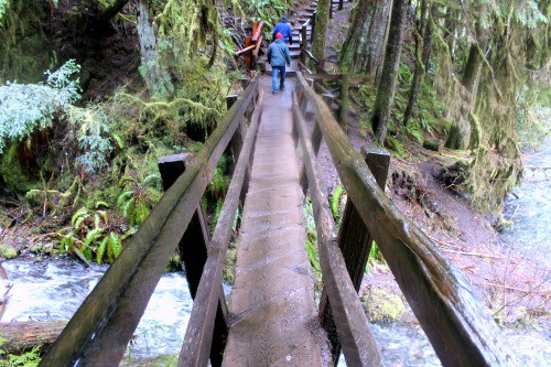 RV Trip Update Week 12: Hike to Marymere Falls, Port Angeles.