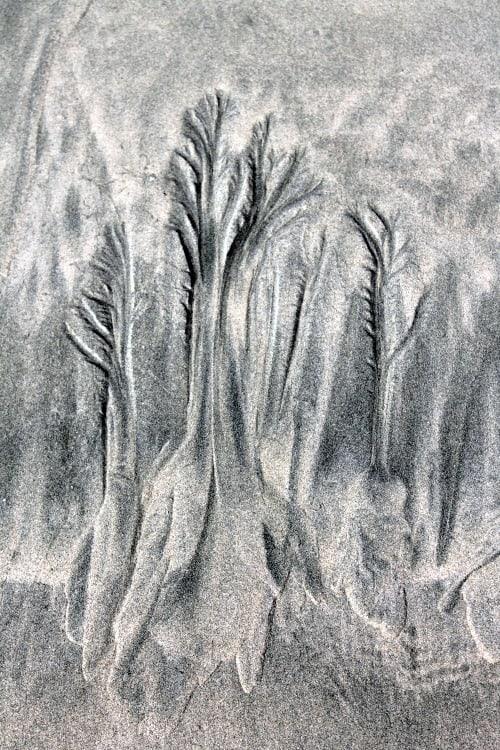 RV Trip Update Week 13: Sand drawings, Long Beach, Tofino, B.C. .