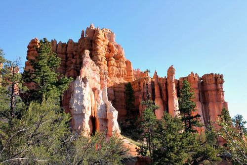 Hoodoo's in Bryce Canyon: seen on week 21 of a 22 week RV road trip.
