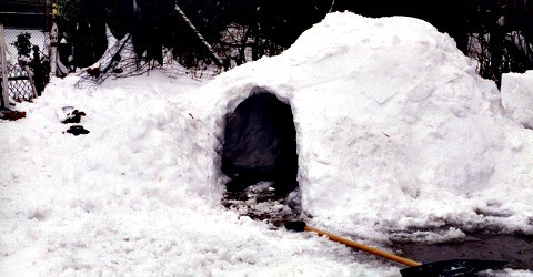 Make a snow fort--one of 25 snow day activities