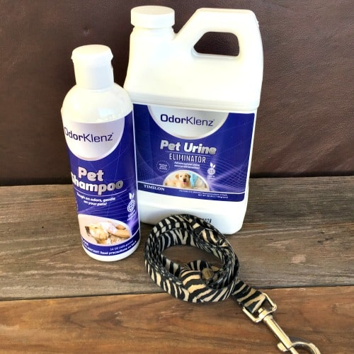 How To Remove Stubborn Pet Urine Odor Without Harsh Chemicals
