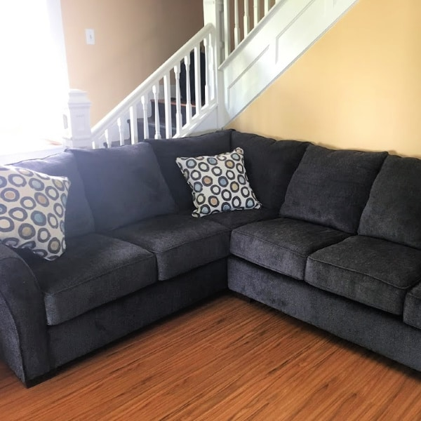 The new couch that won't end up smelling like dog odor.