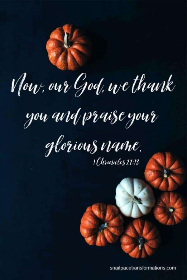 I Chronicles 29:13 (New Century Version) Now, our God, we thank you and praise your glorious name.