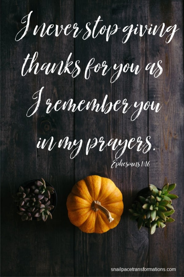 Ephesians 1:16 (Christian Standard Bible) I never stop giving thanks for you as I remember you in my prayers.